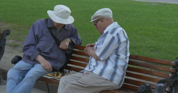 Two Men Are Sitting in Front of Each Other on The Bench, Playing Chess, Men are Inclined upon the Chess Board, Green Meadow Behind the Bench
