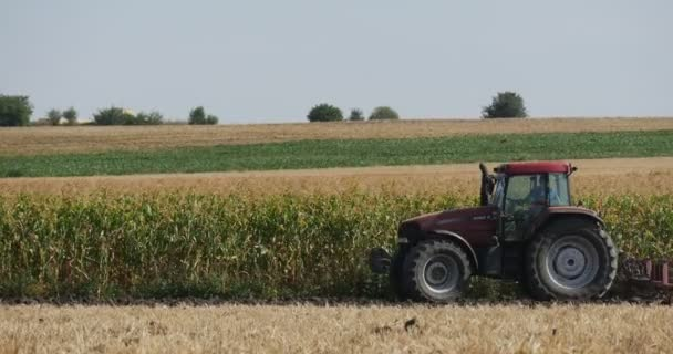 Man is Driving the Tractor on the field With Plow is Plowing The Soil Plants Are Growing on the Field on Background Horizon Blue Sky