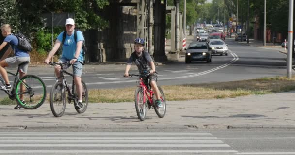 Three Bicyclers Man And The Boy In Bicycle Helmets On The Bicycles Wait Near The Crosswalk Cars Go By Paved Road In Opole Poland Sunny Summer Day
