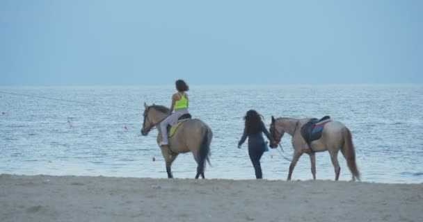 Girl is Riding on a Horse, Girl is Leading The horse by the Beach,Seaside, Coastline, Sandy Beach, People are Walking, Early Evening