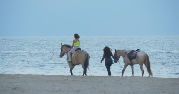 Dívka je jízda na koni, dívka vede koně pláž, moře, pobřeží, Sandy Beach, lidé jsou pěší, brzy večer