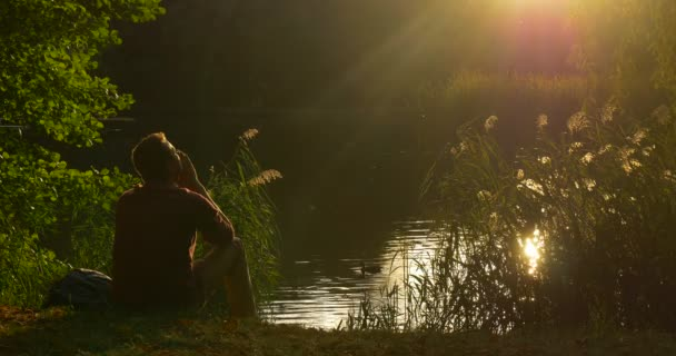 Man is Sitting at The Lake Bank Mans Silhouette Man Has a Rest Cover His Face with Hands Sun Shines to His Face Wild Duck is Swimming Overgrown Bank