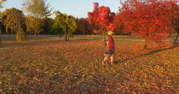 Little Girl a Beret és a Blue Jacket a gyaloglás a Park zoom Girl s Back Girl sétál a fa felé a piros levelek szedés a levelek Sunset