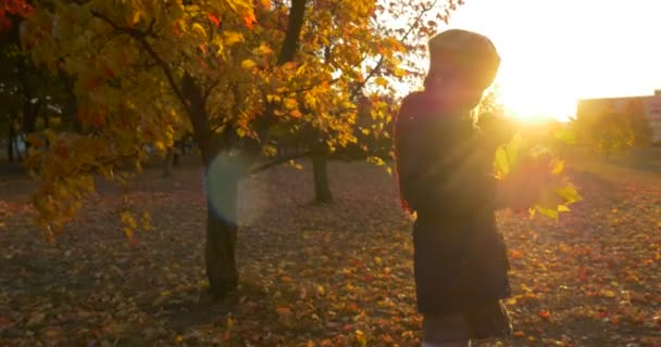 Little Girls Silhouette in Beret And Blue Jacket is Standing at Maple Tree Girl is Holding a Bouquet of Maple Leaves Talking Sunset Houses Buildings