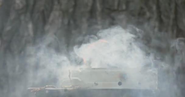Gril s silný kouř a požár v ulici proti pozadí strom