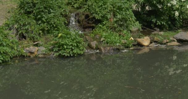 Jezírko, vodopád v parku, břehu řeky
