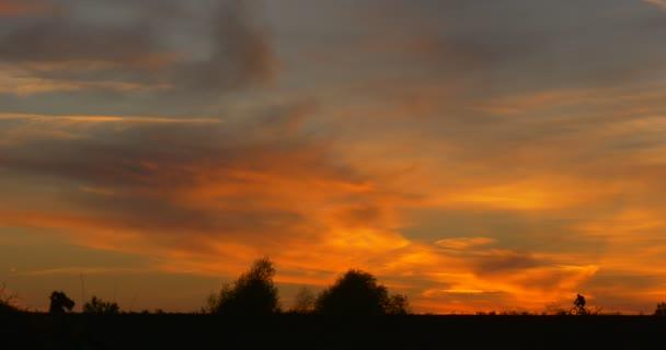Dva muži podle bicyklů muži siluety jízdy na obzoru jasně žlutý západ slunce na poli barevná oblaka Cirrus stromy siluety