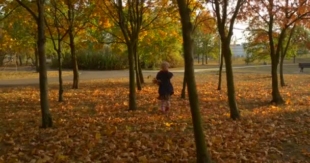 Girl is Choosing The Leaves For Her Bouquet Picks Up from the Ground Little Girl With Blonde Braid in Beret Red Scarf and Jacket is Walking in Park