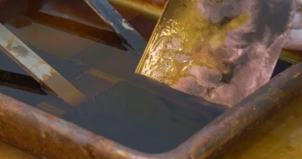 Ruce muže v ochranné rukavice, takže leptání měděné desky v kyselině v kontejneru muž vytáhl obrázky ryté desky na mědi