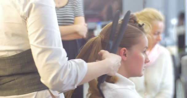 Stylist Hairdresser is Making The Hairstyle Curls by Curling Irons For a Woman with Brown Hairs Ponytails Barbershop Hairdressing Salon Beauty Salon