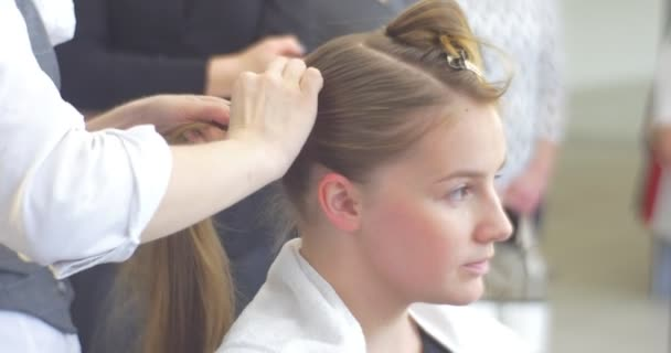 Stylist Hairdresser is Making The Hairstyle Fixing the Hairs in Two Ponytails For a Woman with Brown Hairs Barbershop Hairdressing Salon Beauty Salon