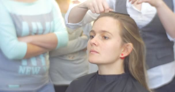 Stylist Hairdresser is Combing The Client Separating the Hair Strand Making The Hairstyle Woman with Long Brown Hairs Barbershop Beauty Salon