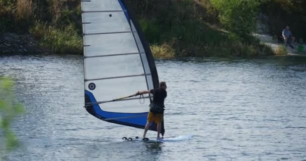 Windsurfer Man on The Windsurf Board With Sail is Floating Fast by Watery  Surface along Sandy Bank Overgrown Bank Green Trees Tracking Right