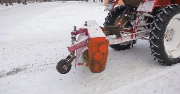 Man Totes a Sled Girl is Sitting in a Sled Tractor Red Bulldozer is Moving Ahead Park Alley Removes the Snow Central Park of Konotop Bare Branches Trees