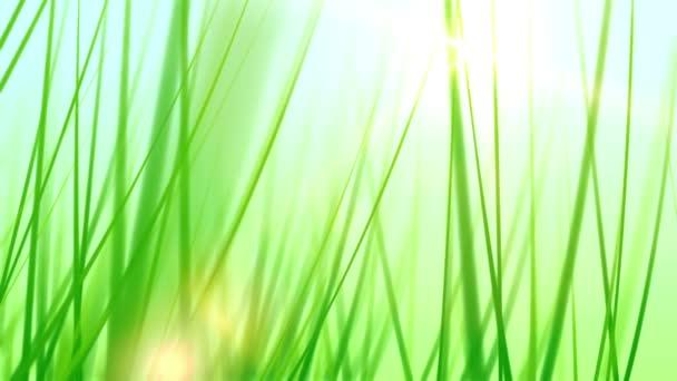 Autodoprava prostřednictvím stébla trávy