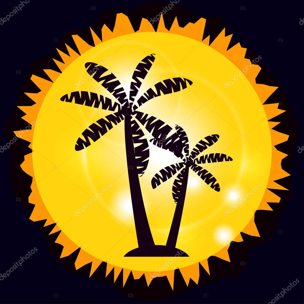 Palm trees on the island. Palm trees on the background of the Sun.
