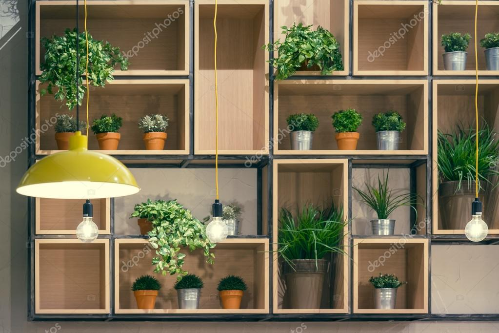 Cafe Interior Decorative Shelves