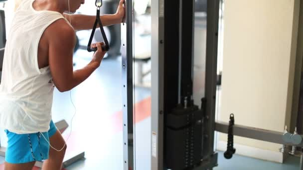 exercise in the gym series 12