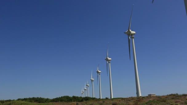 energia rinnovabile, energia verde, mulino a vento, turbina del vento
