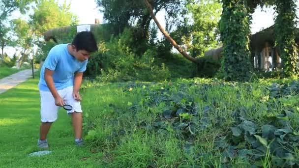 Bambino di esplorare la natura con lente di ingrandimento