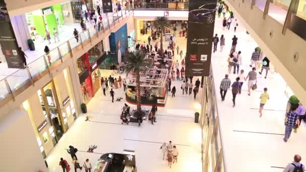 The Dubai Mall 2-3