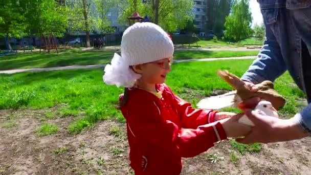 Mädchen spielt mit Haustauben. Mädchen einfach nur glücklich über eine solche Kommunikation. Frühlingssonniger Tag in der Stadt.