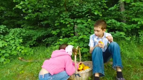 Děti si v lese. Večerní jídlo v lesní plody. Dospívající chlapec jíst Meruňka