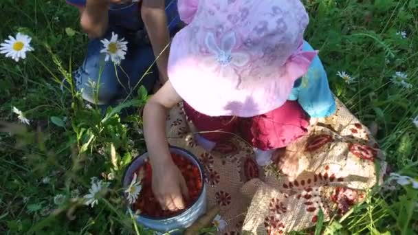 Teen boy and girl child eats wild strawberry on the meadow.