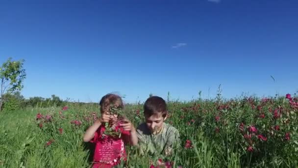 Teenager boy and girl child playing in a meadow. Brother and sister sitting in the grass.