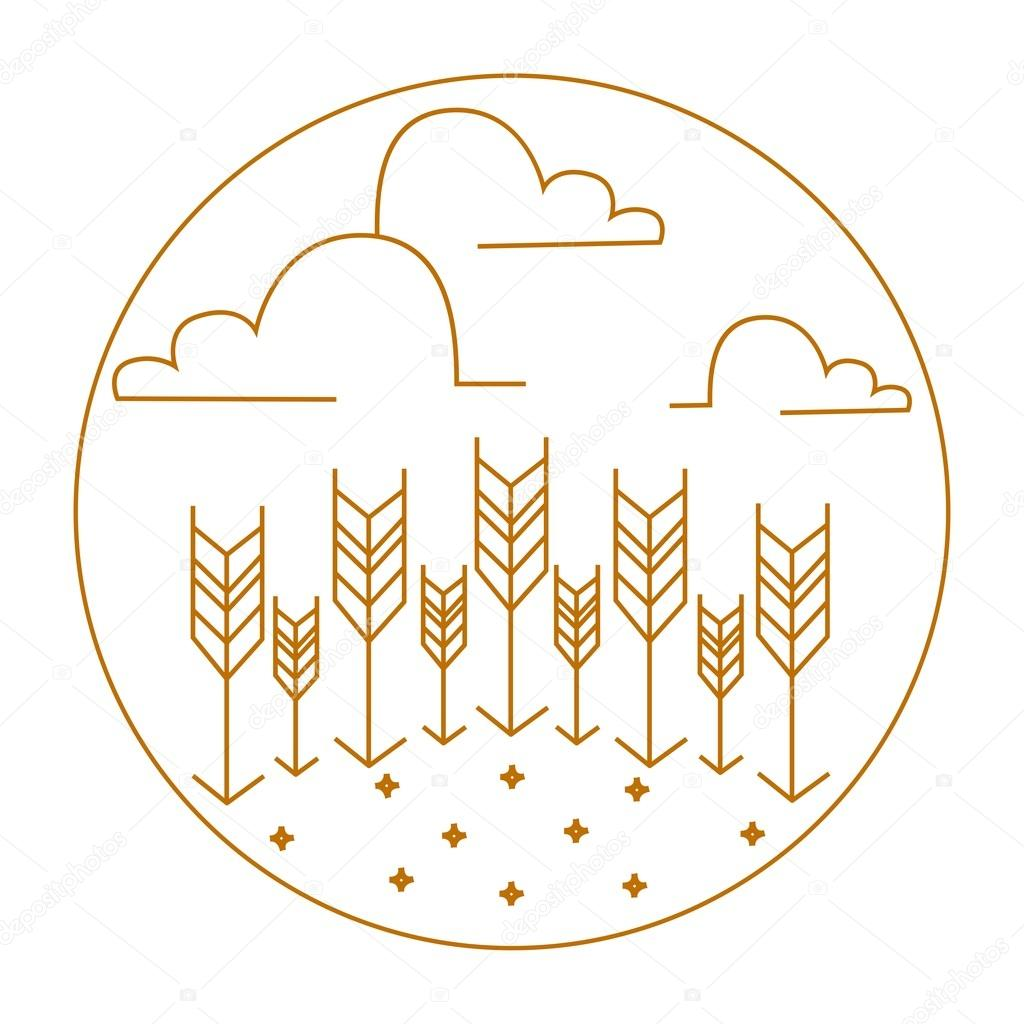 Wheat Ears.Vector nature logos and emblems.