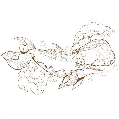 Whale, sperm whale, marine mammal.