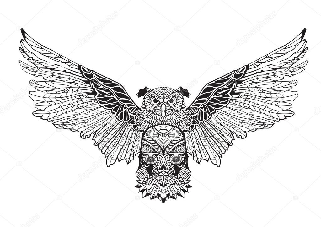 owl with spread wings holding a skull in his paws. contour drawing