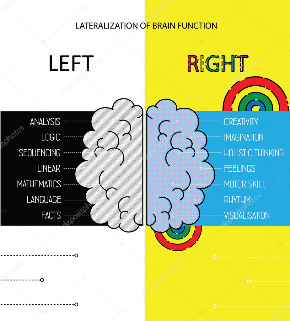 Left and right brain functions info. Lateralization of brain function vector infographics.