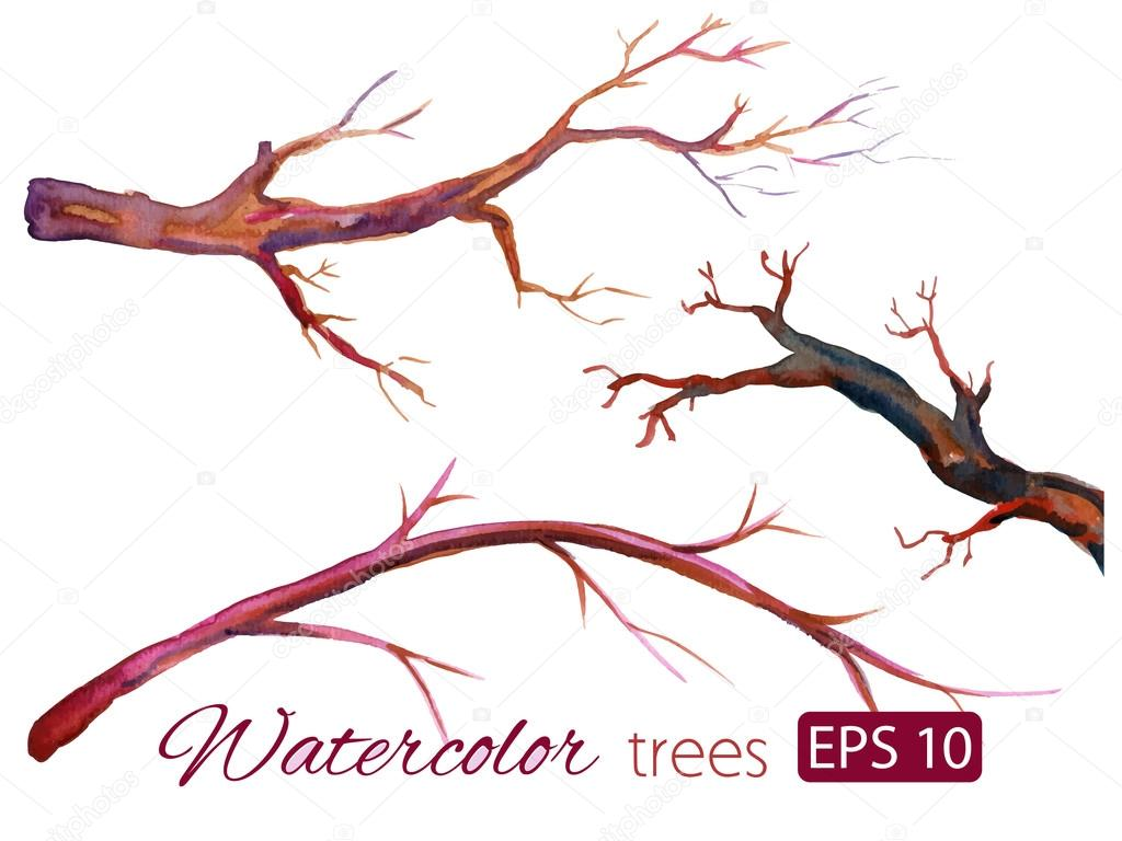 Watercolor branches of isolated colorful trees