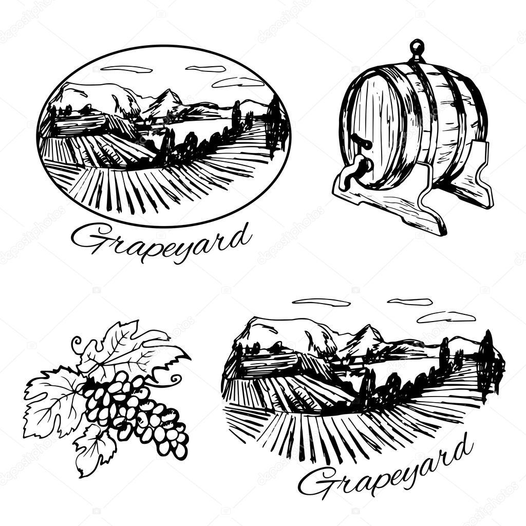 insieme di simboli della vigna  barile di vino ed uva