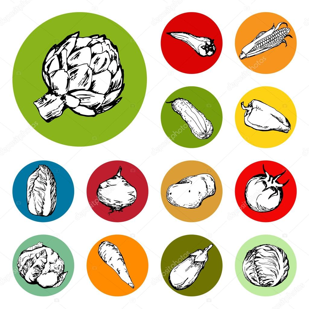 Web icon set of different hand drawn vegetables