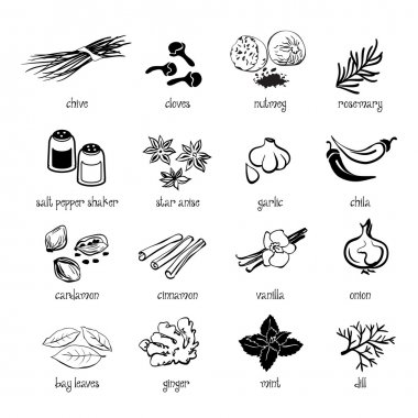 Set of web icon set - spices, condiments and herbs