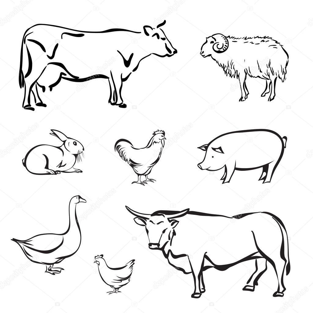 Silhouetten von Nutztieren — Stockvektor © Naniti #99721950