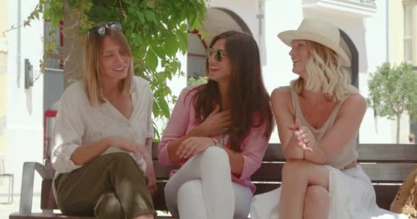 Skupina dospělých sebevědomých přítelkyň v módních šatech sedících na lavičce a šťastně klábosících na městském chodníku na slunci