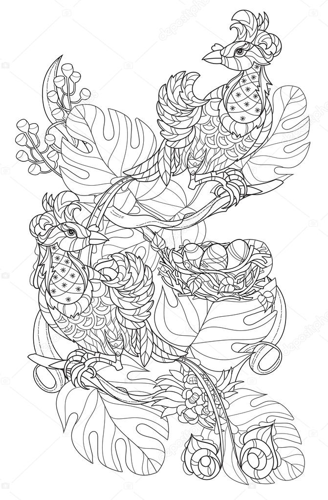 Estilizadas aves tropicales. Vector dibujado mano — Archivo Imágenes ...