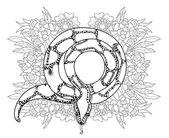 Fotografia Anaconda di contorno doodle disegnato a mano