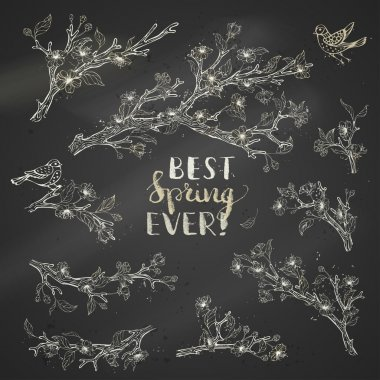 Vector set of chalk spring branches