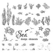 Vector set of underwater marine design