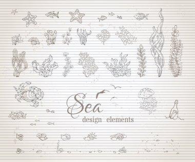 set of vintage sea life design