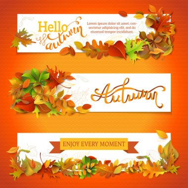 Horizontal fall banners set.