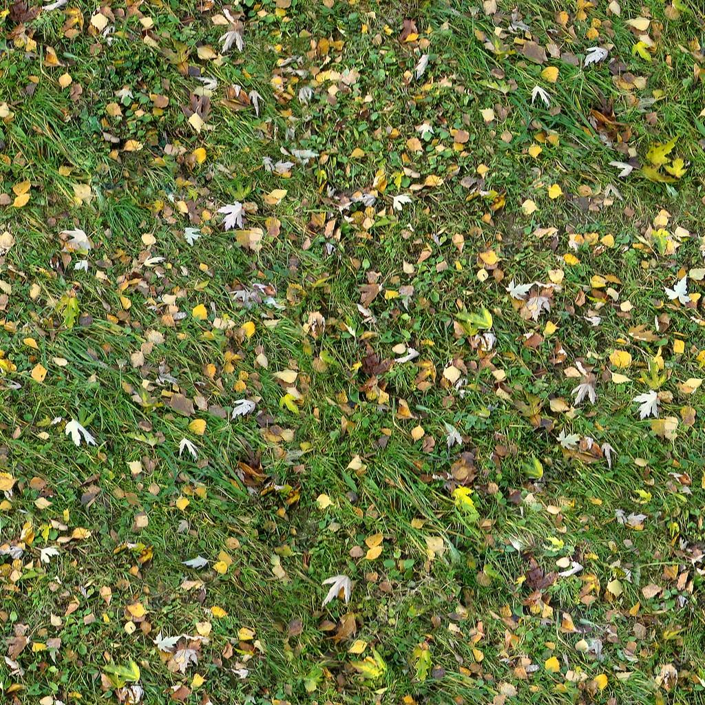 seamless grass texture game. Square Seamless Texture Of The Grass With Fall Leaves. Ready To Use In Any Game Engine \u2014 Photo By BlackStork