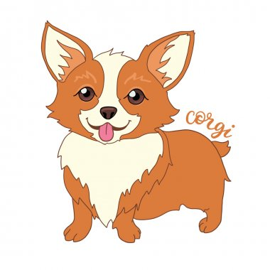 Cute welsh corgi dog