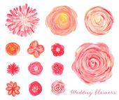 Ručně kreslenou svatební květiny sada