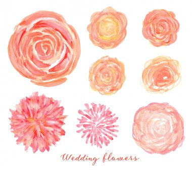 Hand drawn wedding flowers set.