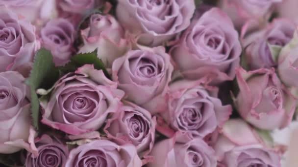 Nádherné růžové květy